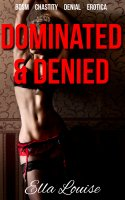 The Kink Diary #1 - Dominated & Denied
